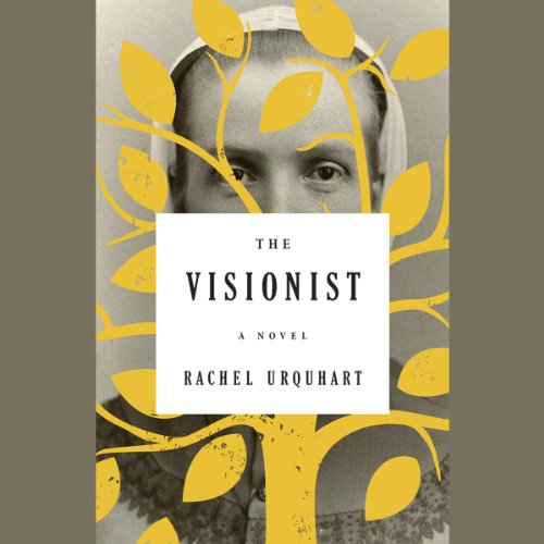 The Visionist audiobook cover art