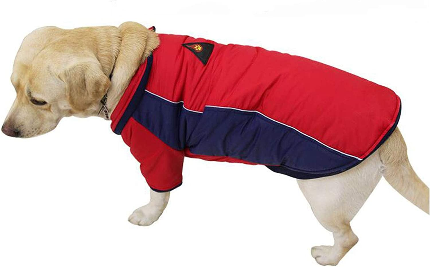 Pet Dog Clothes, Large and MediumSized, Pet TwoLegged Clothing (color   Red, Size   L)