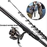 AWSCDCS Canne à pêche - Canne à pêche Carbone Ultra légère Canne à Lancer Long jettant des engins de pêche Canne à pêche Longue Distance, 3.6-6.3m + 3000 Roues,3.6m+3000BR