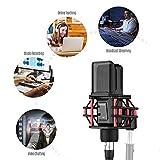 Immagine 2 ammoon microfono condensatore professionale con