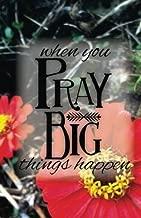 PRAY big: A 6-Week Prayer Journal
