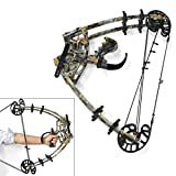 ZSHJG Archery Compound Bow Kit Adult Hunting Compound Bow 50lbs Hunting Steel Ball