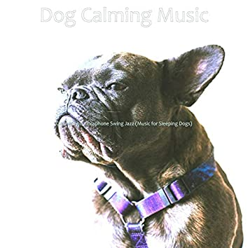 Clarinet and Vibraphone Swing Jazz (Music for Sleeping Dogs)