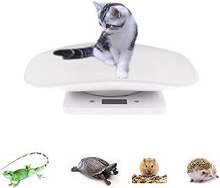 ترازوی دیجیتال چند منظوره مقیاس حیوان خانگی ، مقیاس بچه گربه کوچک سگ بچه کوچک 22 پوند (پوند) ظرفیت ، مقیاس دیجیتال دقیق.