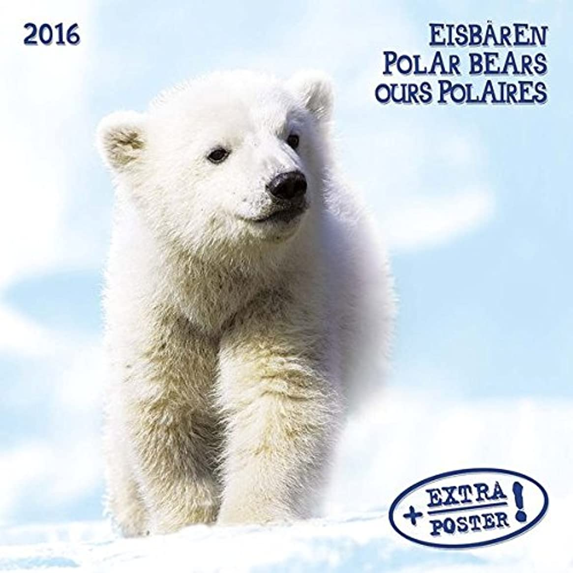 法律により贅沢宗教Eisbaeren / Polar Bears / Ours Polaires 2016. Artwork Edition