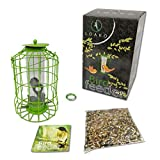 Bird Feeder | Caged Tube Bird Feeder | Squirrels and Large Birds Deterrent | Premium Materials | Weatherproof and Water Resistant | Great for Outdoors | Bonus: Includes Bird Food Mix