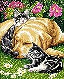 HAO Perro Gato Juntos Pintura de Bricolaje por números Animal Pintura al óleo sobre Lienzo Pradera acrílico Arte de la Pared hogar 40x50cm Sin Marco