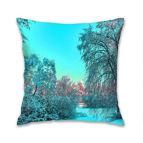N\A Fodere per Cuscini Decorativi in Poliestere Fodere per Cuscini Fodere per Divano Federa Fodera per Cuscino Couch Winter Frozen