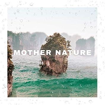 Mother Nature Beach Birds