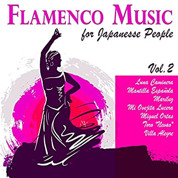 Flamenco Music for Japanese People Vol. 2