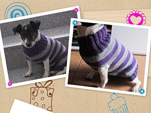 Strickanleitung Hundepulli mit Kragen: Für Anfänger perfekt