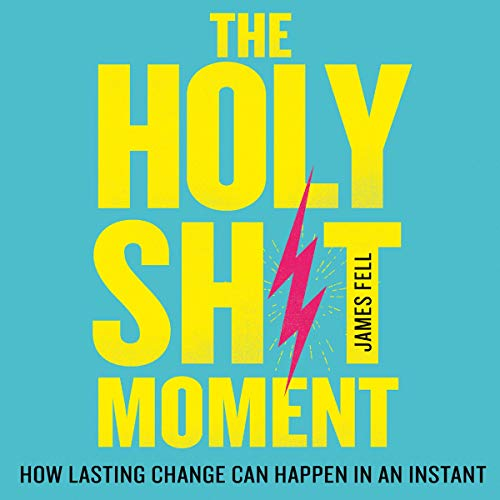 The Holy Sh!t Moment audiobook cover art