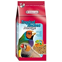 A high quality seed mixture which is suitable for a wide variety of smaller, tropical birds that prefer seed mixtures. This mixture can act as a great base to supplement from to supply the birds with a more varied diet.