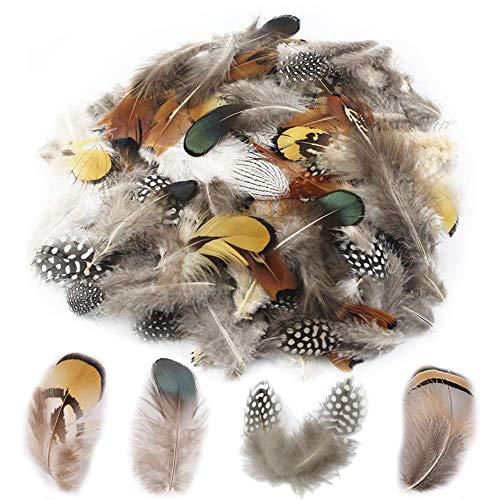 Plumas natural 14 Gramos Mezclados Colores y Tamaños de aproximadamente 200-250 plumas