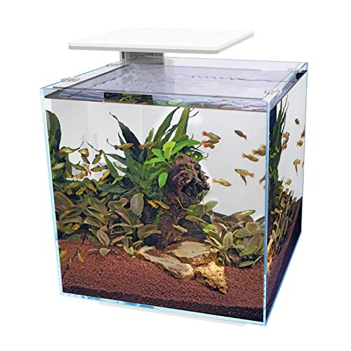Superfish Qubiq Pro Aquarium mit LED-Licht, 60 l, Weiß