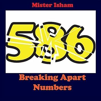 Breaking Apart Numbers