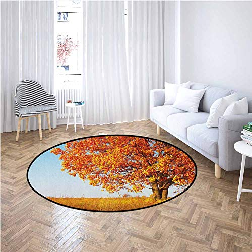 Fall Round Rug Lonely and Ancient Oak Tree Grass Bushes Field Serene Rural Scenery All Season General Orange Yellow Pale Blue,Diameter 5'(150cm)