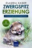 Zwergspitz Erziehung: Hundeerziehung für Deinen Zwergspitz Welpen