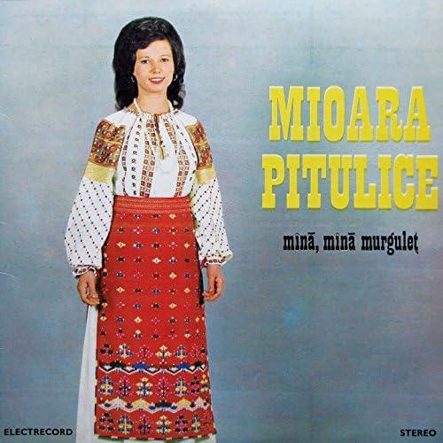 Mioara Pitulice