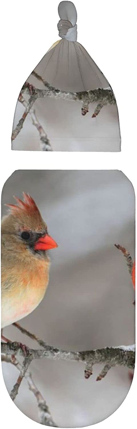 A Pair of Birds in Super beauty product Bargain sale restock quality top The Weara Tree Infant Newborn Swaddle Blanket
