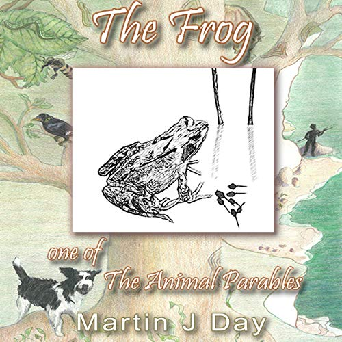 The Frog - Who Got Out of His Depth cover art