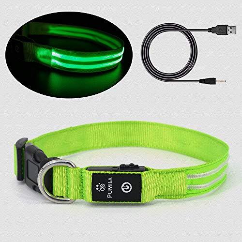 Pumila LED Leuchthalsband Hunde Halsband USB wiederaufladbar Blinkende Einstellbare Hundehalsband Wasserdicht Super Bright Doppelte Optische Faser - Grün - XS
