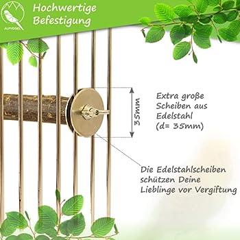 Alpvogel Lot de 6 vis de branches (Torx) - En acier inoxydable - 35 mm d'épaisseur - Pour fixation de cages à oiseaux, planches, perchoirs et nids - Pour perroquets et autres