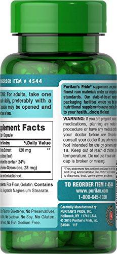 Puritan's Pride Ginkgo Biloba Standardized Extract 120 mg-100 Capsules