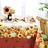 Thanksgiving Autumn Pumpkins Bordered Tablecloth Fall Season Fabric Harvest Printed Tablecloth Washable 56' X 85' Rectangle
