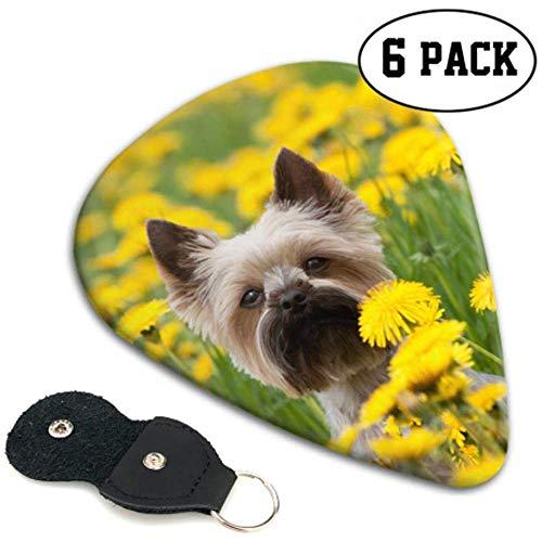 Dog In The Beautiful Flower Fields Guitar Pick Pack Disfraz Guitar Picks...