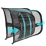 sanlinkee 2 PCS Cojín Lumbar Soporte para la Espalda Lumbar ergonómico Cojín de Soporte Lumbar para Silla de Oficina Coche corrije la Postura Alivia el Dolor Lumbar(Negro)
