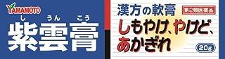 【第2類医薬品】紫雲膏ダイコー 20g