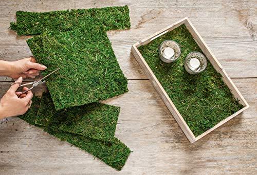 """Deko-Matte """"Moos"""", grün, Naturmoos auf Kunststoffgewebe zum Basteln, Kunst"""