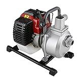 EBERTH 1' Pompe à eau thermique (12.500 l/h, 2 CV Moteur à essence, Connection 1 Pouces, 17,5m Hauteur de refoulement, 7m Hauteur d'aspiration)