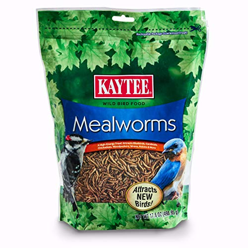 Kaytee 100508146 Mealworm Food Pouch, 17.6 Ounce, None