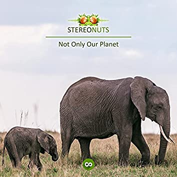 Not Only Our Planet