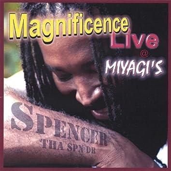 Magnificence Live @ Miyagi's