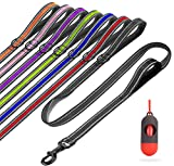 Btromeshy Dog Leash,5 FT Heavy Duty Rope Dog Leashes with 2 Padded Handles,Pet Training Lead with 3M Reflective,Double Handle Dog Leash Control Safety for Small Medium Large Breeds (Black)