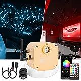 CHINLY Bluetooth 16W RGBW Scintillio LED Fibra Ottica Star Plafoniere Kit APP/Telecomando 300 pz*(0,75+1,0+1,5mm)* 3m per Casa/Auto