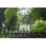 Chocolate vol.40: 梅雨映え