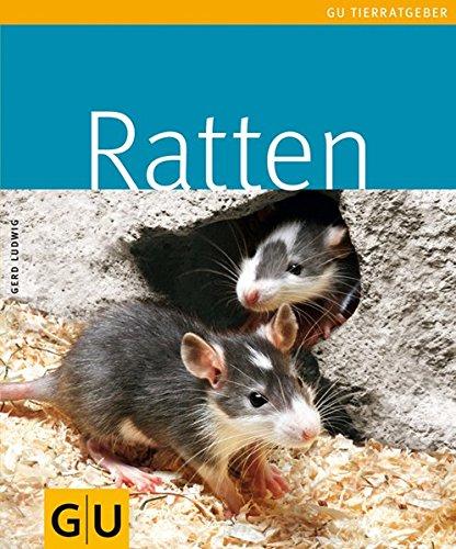 Ratten (GU TierRatgeber)