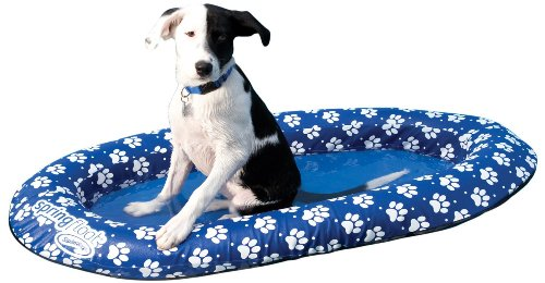 SwimWays Spring Float Paddle Dog Pool Float - Small (0-65 lbs)