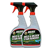 Moldex Biodegradable Mold and Mildew Stain Remover, 32 oz - 2 Bottles