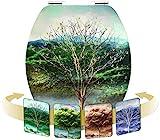 Cornat KSDSC311 Tapa WC, diseño 3D 4 seasons
