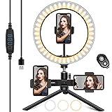 HAPAW Selfie Ringlicht Stativ mit 3 Handyhalter & Fernbedienung, 10.2' Selfie Ringleuchte, 3 Farbe Kaltes Warmes Licht, 10 Helligkeitsstufen, Desktop Ringlicht für YouTube/TikTok/Live-Stream/Makeup
