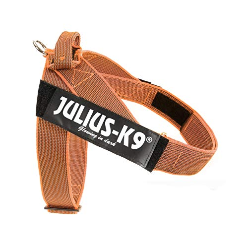 Julius-K9 IDC Color & Gray Belt Harness, Size: 2, Orange-Gray
