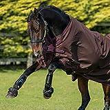 Horseware Amigo Hero 900 Turnout Lite 50gr, Disc Front, Choc/Rasp - Weidedecke - Regendecke, Deckengröße:145 cm / 6´6
