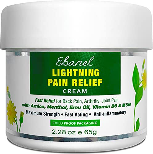 Ebanel Menthol Arnica Gel Pain Relief Cream with Hemp Oil, Emu Oil, MSM, Camphor, Vitamin B6, Boswellia, Anti Inflammatory Bruise Cream Muscle Rub for Arthritis, Nerve Joint Neck Shoulder Back Pain