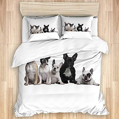 SKAERGI HEBING Washed Cotton Duvet Cover Set,Group of Young French Bulldogs with Adorable Expressions Animal Lover,3 Pieces Luxury Soft Bedding Set Twins Size(No Comforter)