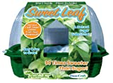 Sprout 'n Grow Greenhouses Sweet Leaf (Colors May Vary)